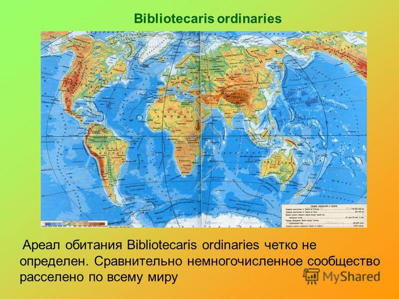 Bibliotecaris ordinaries Ареал обитания Bibliotecaris ordinaries четко не определен. Сравнительно немногочисленное сообщество расселено по всему миру