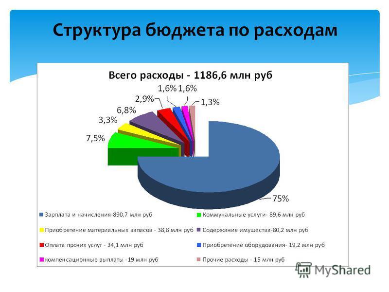 Структура бюджета по расходам
