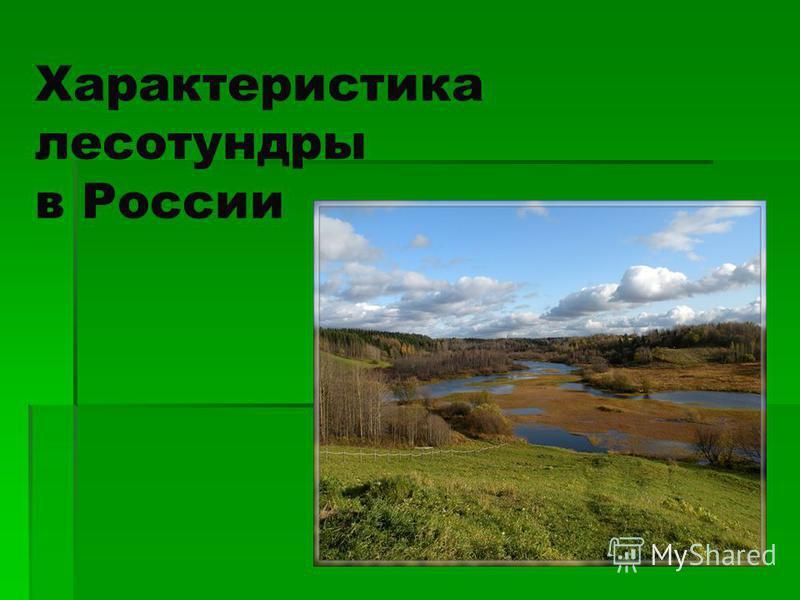 Характеристика лесотундры в России
