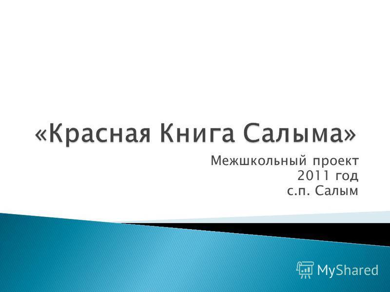 Межшкольный проект 2011 год с.п. Салым