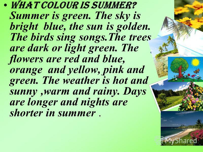 What colour is summer? Summer is green. The sky is bright blue, the sun is golden. The birds sing songs.The trees are dark or light green. The flowers are red and blue, orange and yellow, pink and green. The weather is hot and sunny,warm and rainy. D