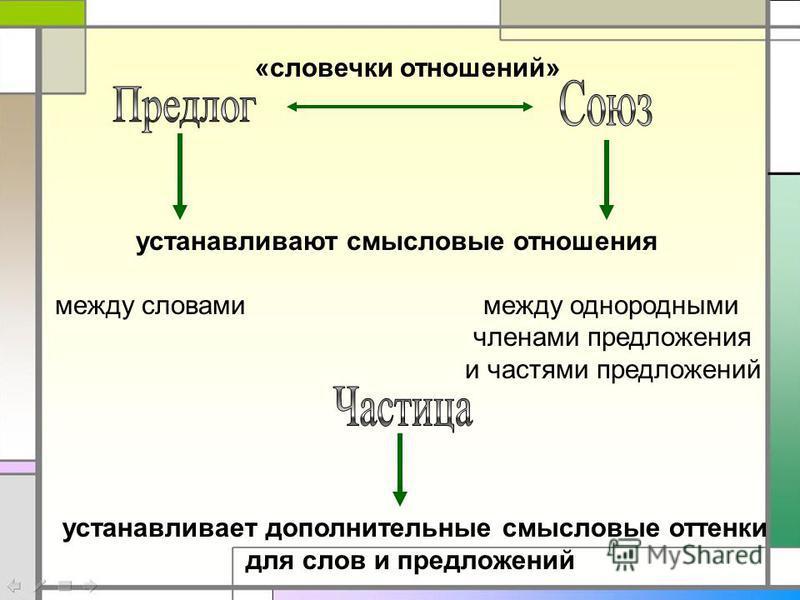 устанавливают смысловые отношения между словами между однородными членами предложения и частями предложений «словечки отношений» устанавливает дополнительные смысловые оттенки для слов и предложений