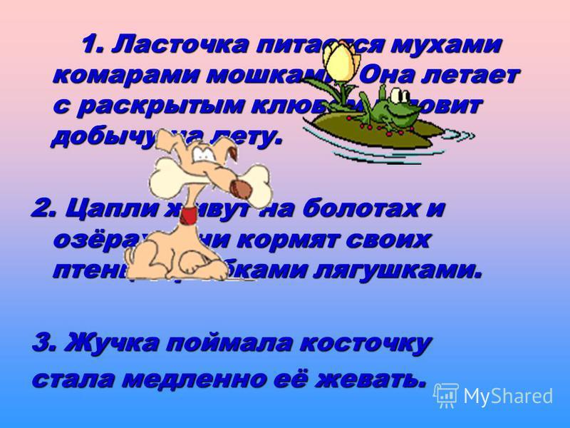 1. Ласточка питается мухами комарами мошками. Она летает с раскрытым клювом и ловит добычу на лету. 2. Цапли живут на болотах и озёрах. Они кормят своих птенцов рыбками лягушками. 3. Жучка поймала косточку стала медленно её жевать.