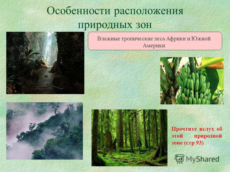 Особенности расположения природных зон Влажные тропические леса Африки и Южной Америки Прочтите вслух об этой природной зоне (стр 93)