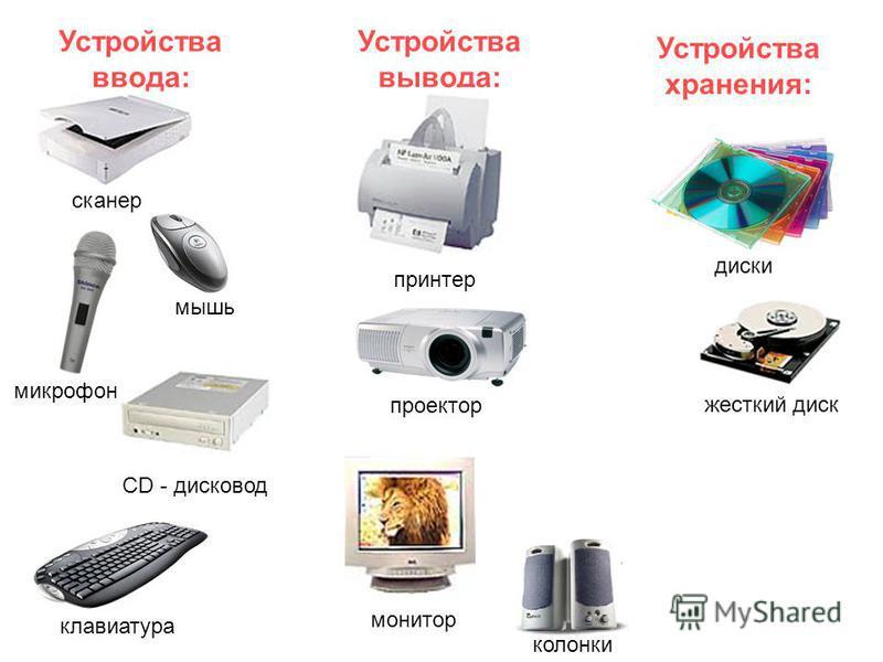 Устройства ввода: Устройства вывода: Устройства хранения: сканер жесткий диск CD - дисковод принтер колонки клавиатура проектор мышь монитор микрофон диски