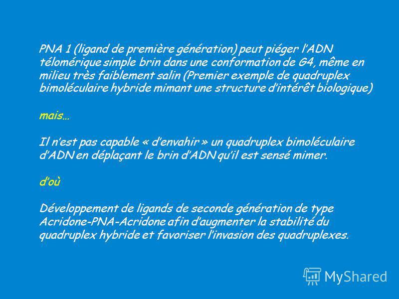 PNA 1 (ligand de première génération) peut piéger lADN télomérique simple brin dans une conformation de G4, même en milieu très faiblement salin (Premier exemple de quadruplex bimoléculaire hybride mimant une structure dintérêt biologique) mais… Il n