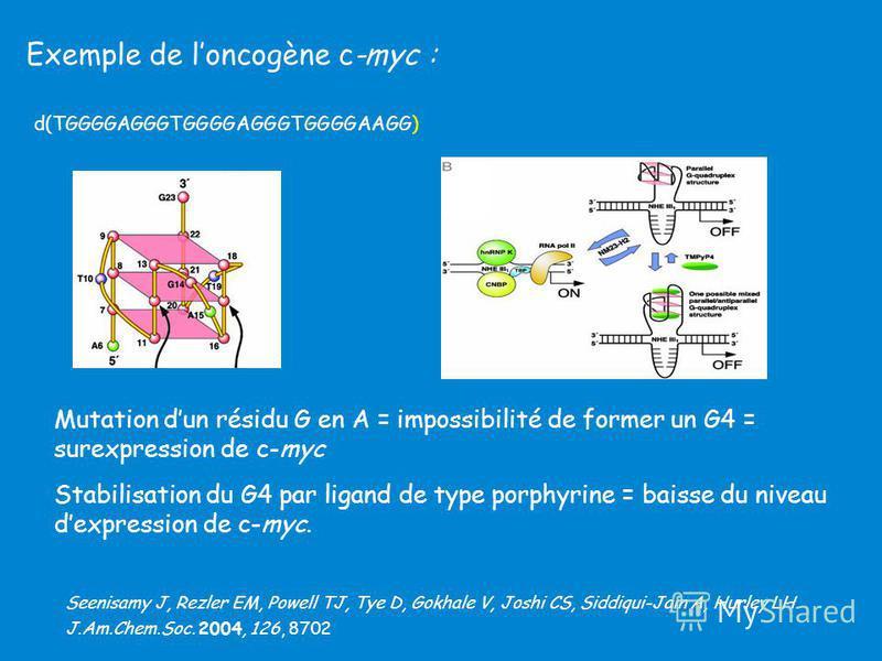 Exemple de loncogène c-myc : Mutation dun résidu G en A = impossibilité de former un G4 = surexpression de c-myc Stabilisation du G4 par ligand de type porphyrine = baisse du niveau dexpression de c-myc. d(TGGGGAGGGTGGGGAGGGTGGGGAAGG) Seenisamy J, Re