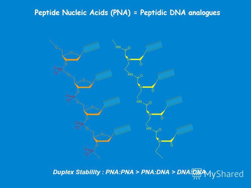 Peptide Nucleic Acids (PNA) = Peptidic DNA analogues Duplex Stability : PNA:PNA > PNA:DNA > DNA:DNA