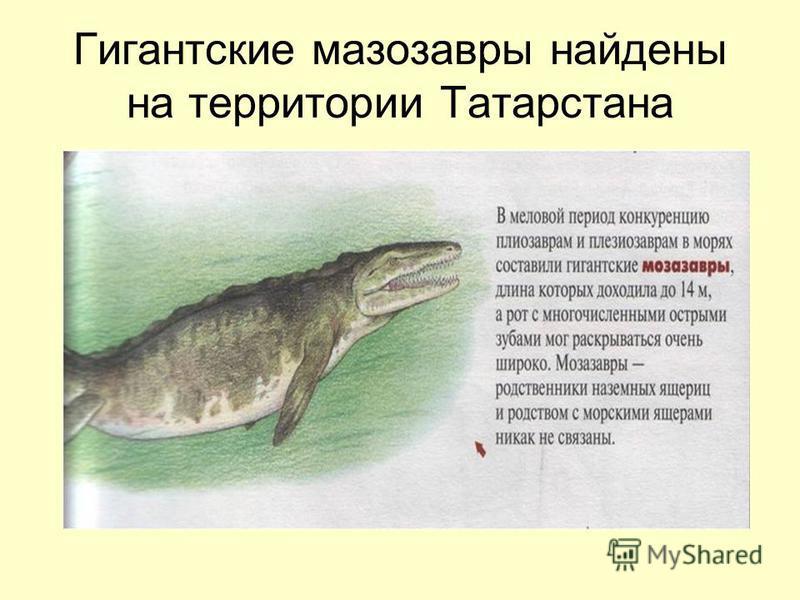 Гигантские мезозавры найдены на территории Татарстана