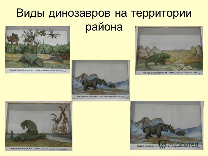 Виды динозавров на территории района
