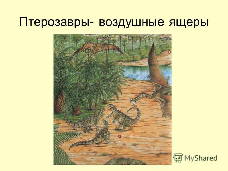 Птерозавры- воздушные ящеры