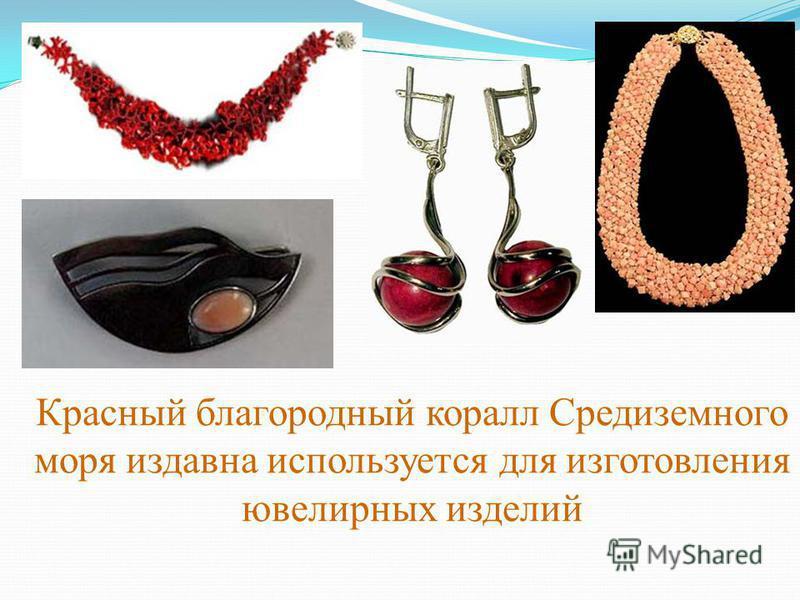 Красный благородный коралл Средиземного моря издавна используется для изготовления ювелирных изделий
