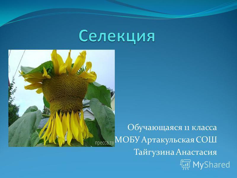 Обучающаяся 11 класса МОБУ Артакульская СОШ Тайгузина Анастасия