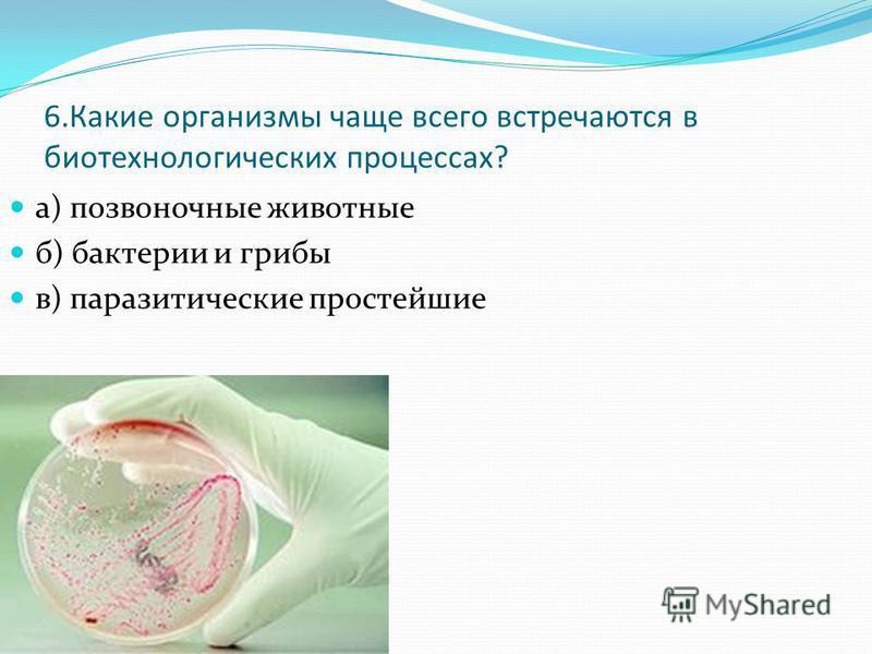 6. Какие организмы чаще всего встречаются в биотехнологических процессах? а) позвоночные животные б) бактерии и грибы в) паразитические простейшие