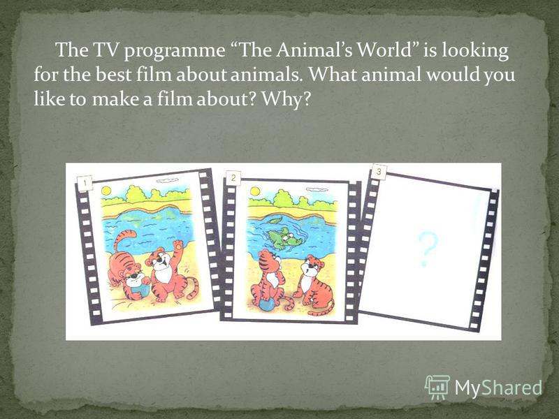 The TV programme The Animals World is looking for the best film about animals. What animal would you like to make a film about? Why?