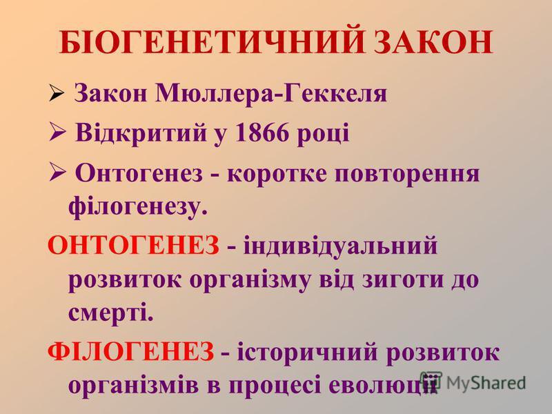 БІОГЕНЕТИЧНИЙ ЗАКОН Закон Мюллера-Геккеля Відкритий у 1866 році Онтогенез - коротке повторення філогенезу. ОНТОГЕНЕЗ - індивідуальний розвиток організму від зиготи до смерті. ФІЛОГЕНЕЗ - історичний розвиток організмів в процесі еволюції