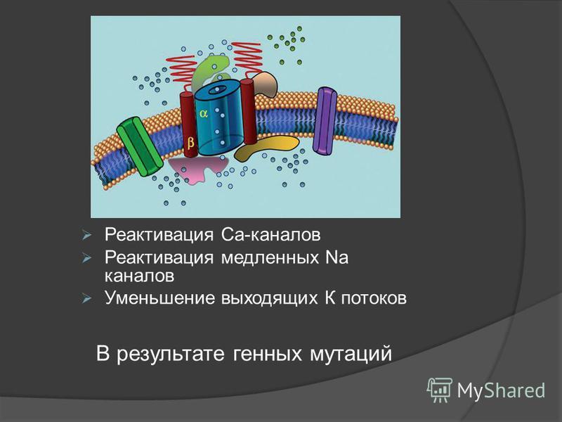 Реактивация Ca-каналов Реактивация медленных Na каналов Уменьшение выходящих К потоков В результате генных мутаций