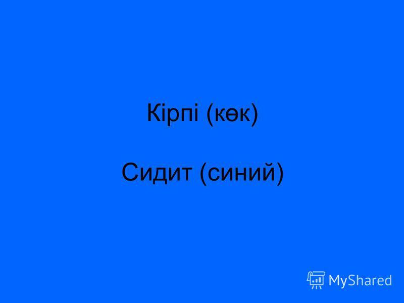 Кірпі (көк) Сидит (синий)