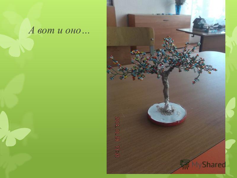 Клименков Ваня с увлечением трудится над своим деревцем…