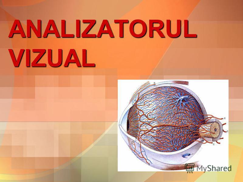 ANALIZATORUL VIZUAL