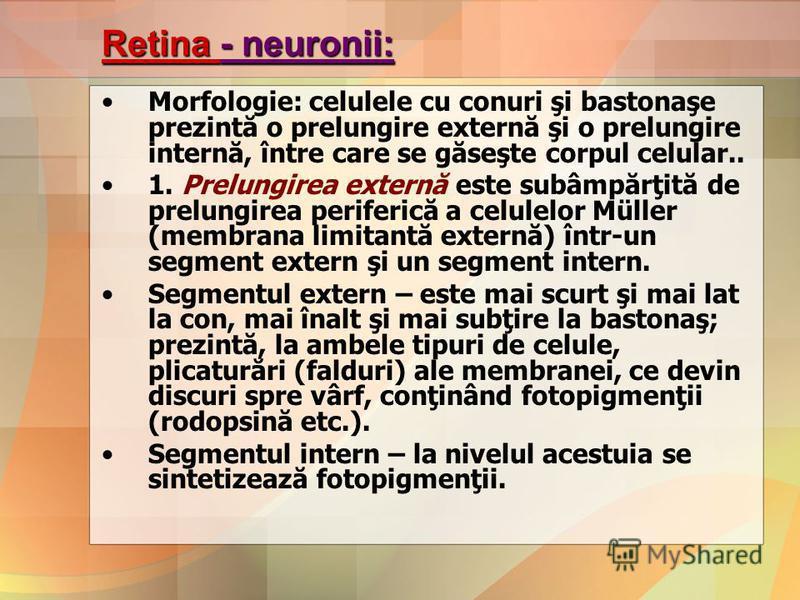 Retina - neuronii: Morfologie: celulele cu conuri şi bastonaşe prezintă o prelungire externă şi o prelungire internă, între care se găseşte corpul celular.. 1. Prelungirea externă este subâmpărţită de prelungirea periferică a celulelor Müller (membra