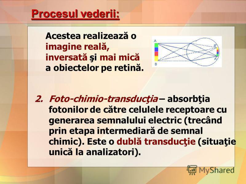 Procesul vederii: Acestea realizează o imagine reală, inversată şi mai mică a obiectelor pe retină. 2.Foto-chimio-transducţia – absorbţia fotonilor de către celulele receptoare cu generarea semnalului electric (trecând prin etapa intermediară de semn