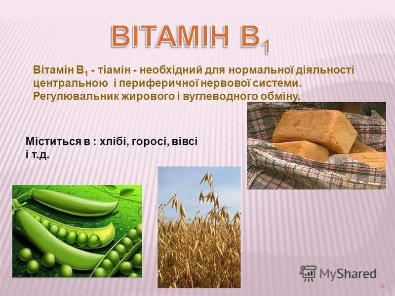 5 Вітамін B 1 - тіамін - необхідний для нормальної діяльності центральною і периферичної нервової системи. Регулювальник жирового і вуглеводного обміну. Міститься в : хлібі, горосі, вівсі і т.д.