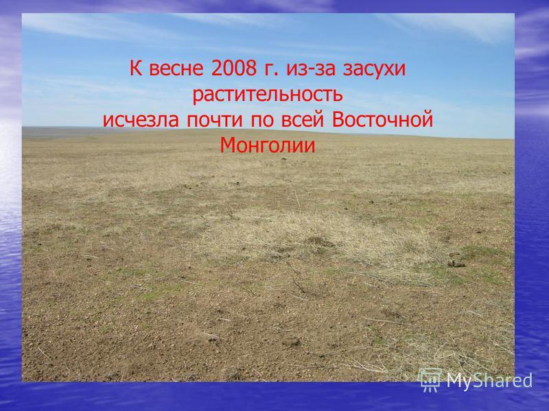 К весне 2008 г. из-за засухи растительность исчезла почти по всей Восточной Монголии