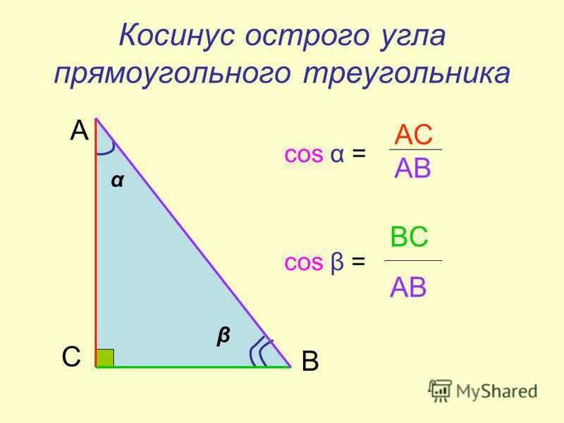 Косинус острого угла прямоугольного треугольника соs α = cos β = α β С А В AC AB BC AB