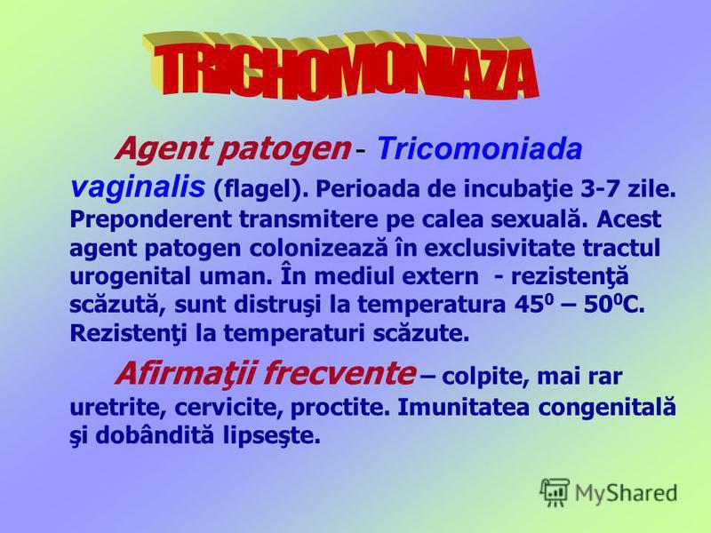 Agent patogen - Tricomoniada vaginalis (flagel). Perioada de incubaţie 3-7 zile. Preponderent transmitere pe calea sexuală. Acest agent patogen colonizează în exclusivitate tractul urogenital uman. În mediul extern - rezistenţă scăzută, sunt distruşi