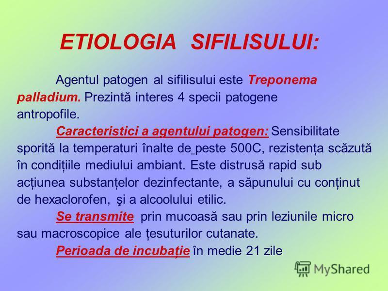 ETIOLOGIA SIFILISULUI: Agentul patogen al sifilisului este Treponema palladium. Prezintă interes 4 specii patogene antropofile. Caracteristici a agentului patogen: Sensibilitate sporită la temperaturi înalte de peste 500C, rezistenţa scăzută în condi