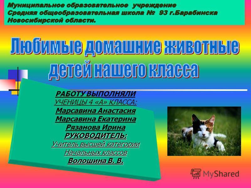 Муниципальное образовательное учреждение Средняя общеобразовательная школа 93 г.Барабинска Новосибирской области.