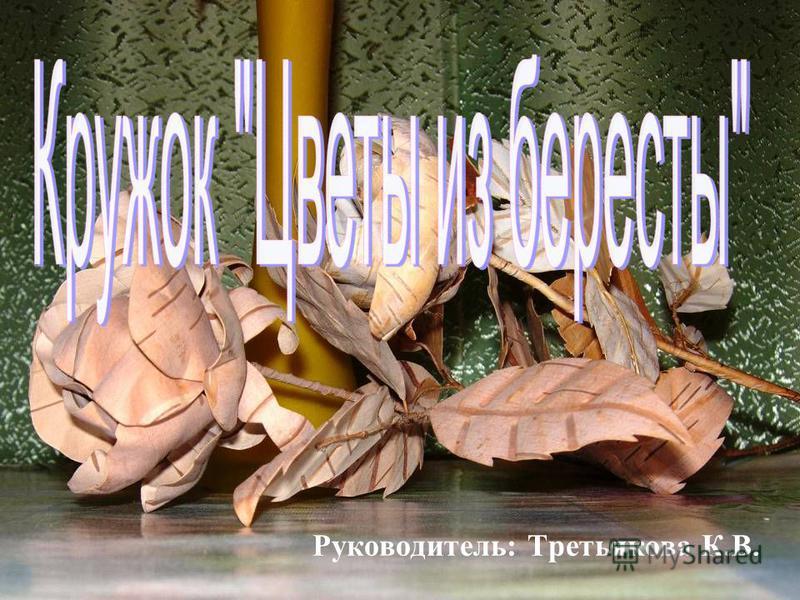 Руководитель: Третьякова К.В.