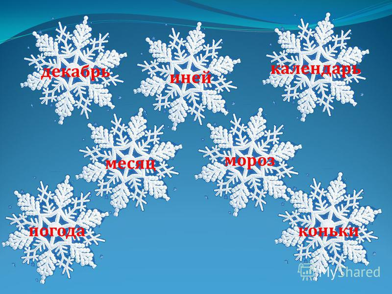 иней какалендарь месяц мороз погодаконики декабрь