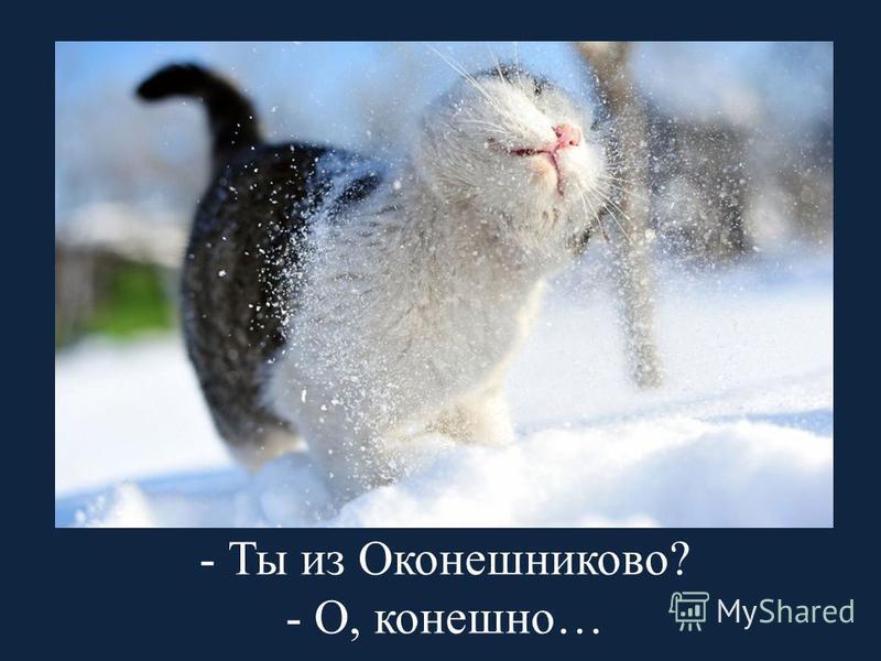 - Ты из Оконешниково? - О, конечно…