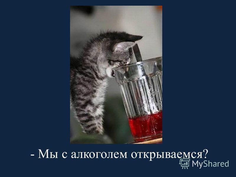 - Мы с алкоголем открываемся?
