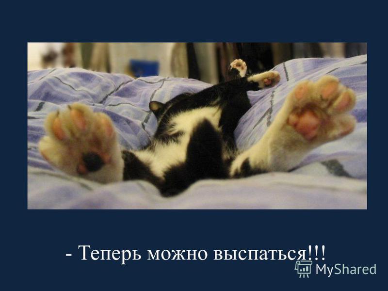 - Теперь можно выспаться!!!