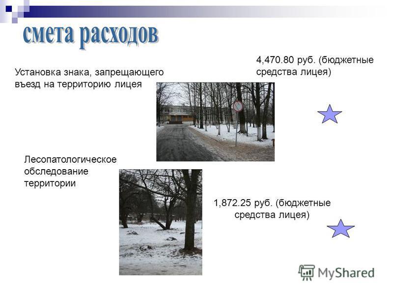 Установка знака, запрещающего въезд на территорию лицея 4,470.80 руб. (бюджетные средства лицея) Лесопатологическое обследование территории 1,872.25 руб. (бюджетные средства лицея)