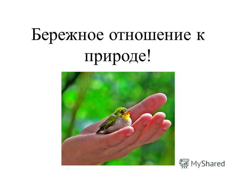 Бережное отношение к природе!