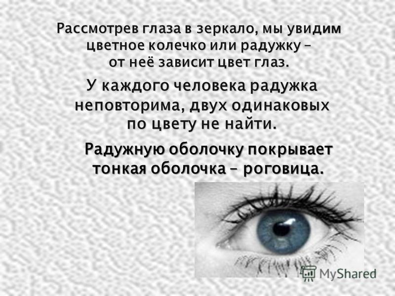 Рассмотрев глаза в зеркало, мы увидим цветное колечко или радужку – от неё зависит цвет глаз. У каждого человека радужка неповторима, двух одинаковых по цвету не найти. Радужную оболочку покрывает тонкая оболочка – роговица.