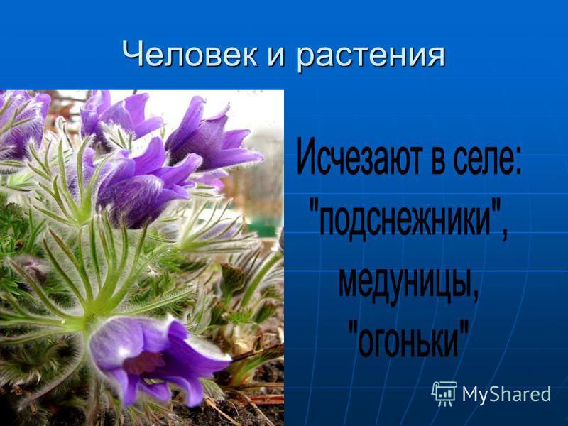 Человек и растения