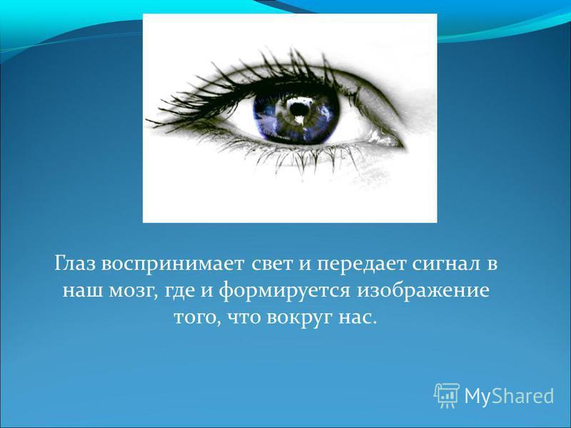 Глаз воспринимает свет и передает сигнал в наш мозг, где и формируется изображение того, что вокруг нас.