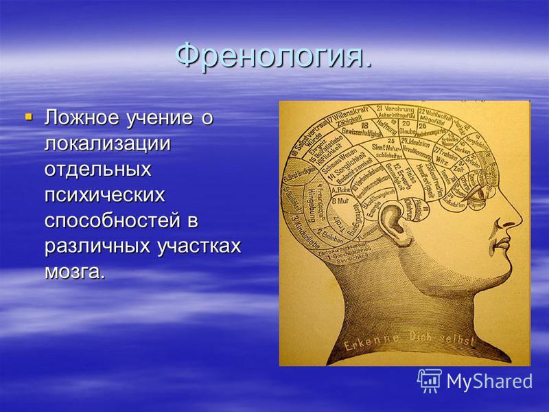 Френология. Ложное учение о локализации отдельных психических способностей в различных участках мозга. Ложное учение о локализации отдельных психических способностей в различных участках мозга.