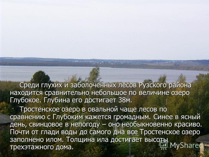 Природа края Западная часть Подмосковья занимает около трети территории Московской области. Западная часть Подмосковья занимает около трети территории Московской области. Если посмотришь на этот район с воздуха, увидишь холмы с пологими склонами, дол