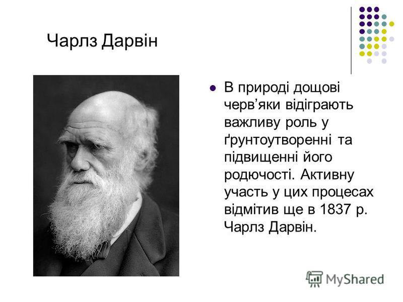 В природі дощові червяки відіграють важливу роль у ґрунтоутворенні та підвищенні його родючості. Активну участь у цих процесах відмітив ще в 1837 р. Чарлз Дарвін. Чарлз Дарвін