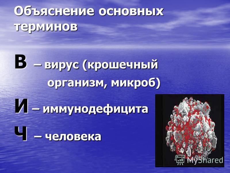 Объяснение основных терминов В – вирус (крошечный организм, микроб) организм, микроб) И – иммуннойдефицита Ч – человека