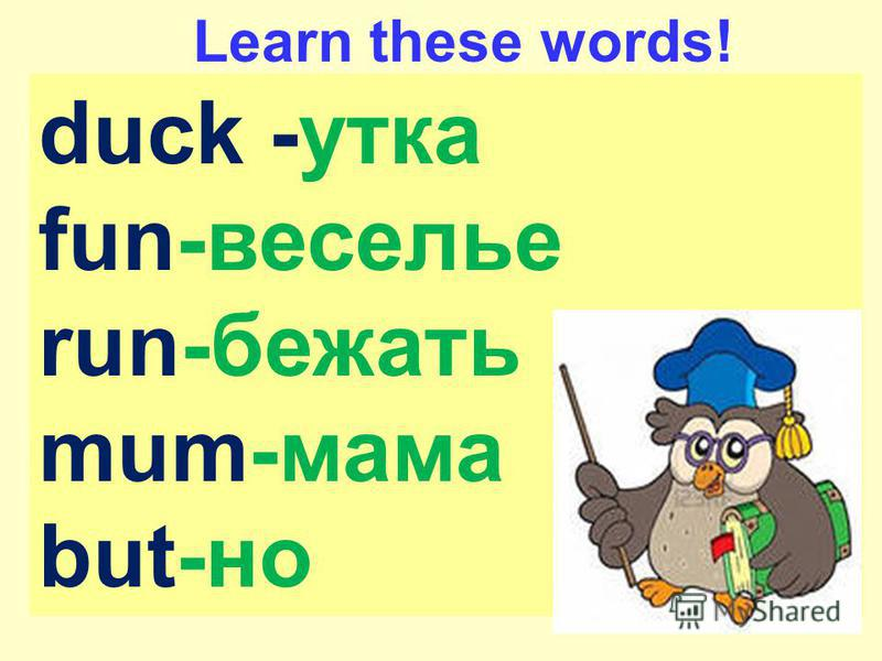 duck -утка fun-веселье run-бежать mum-мама but-но Learn these words!