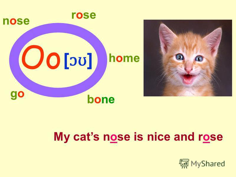 Oo [ ɔʊ ] nose rose home gogo bone My cats nose is nice and rose