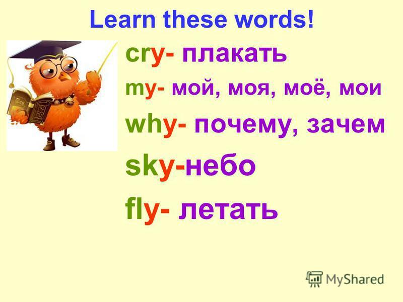 Learn these words! cry- плакать my- мой, моя, моё, мои why- почему, зачем sky-небо fly- летать