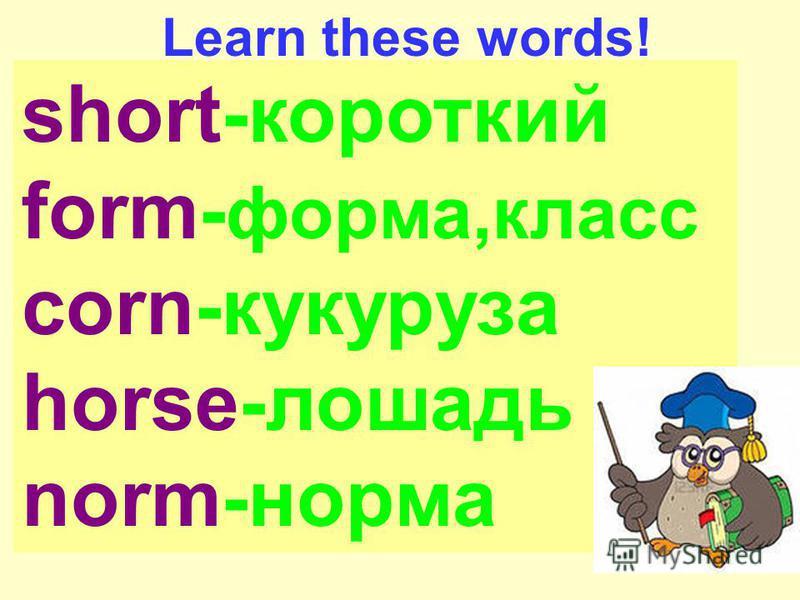 short-короткий form- форма,класс corn-кукуруза horse-лошадь norm-норма Learn these words!